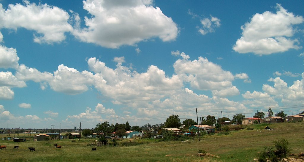 Rural Housing - Heilbron