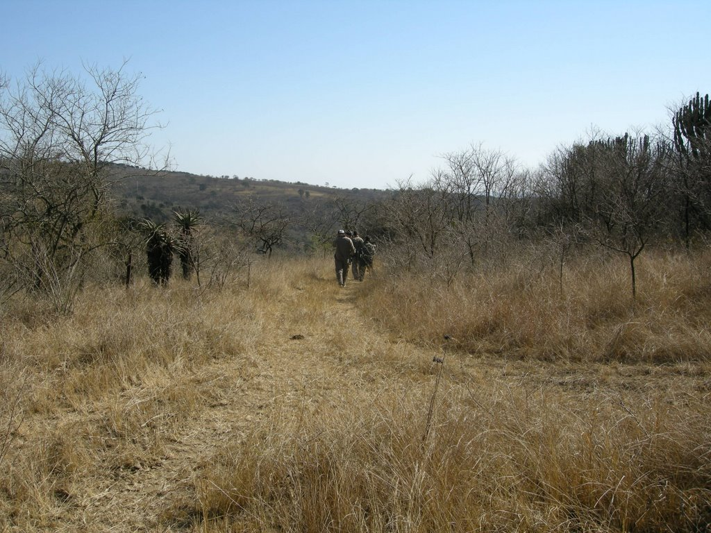 Paintball team recce to flush snipers out of surrounding bush