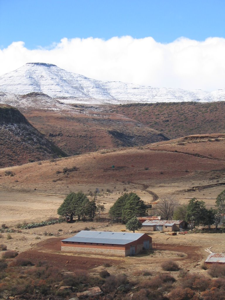 Snow between Barkly East and Rossouw