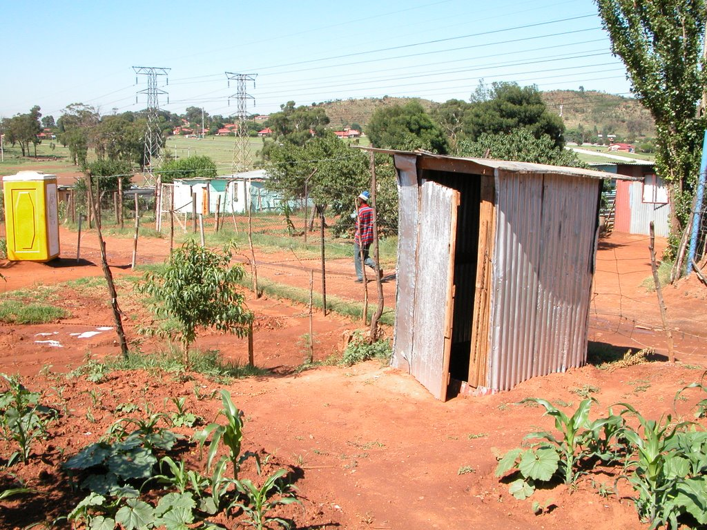 Outhouse in Garden in Soweto, former slum, near Joberg, South Africa