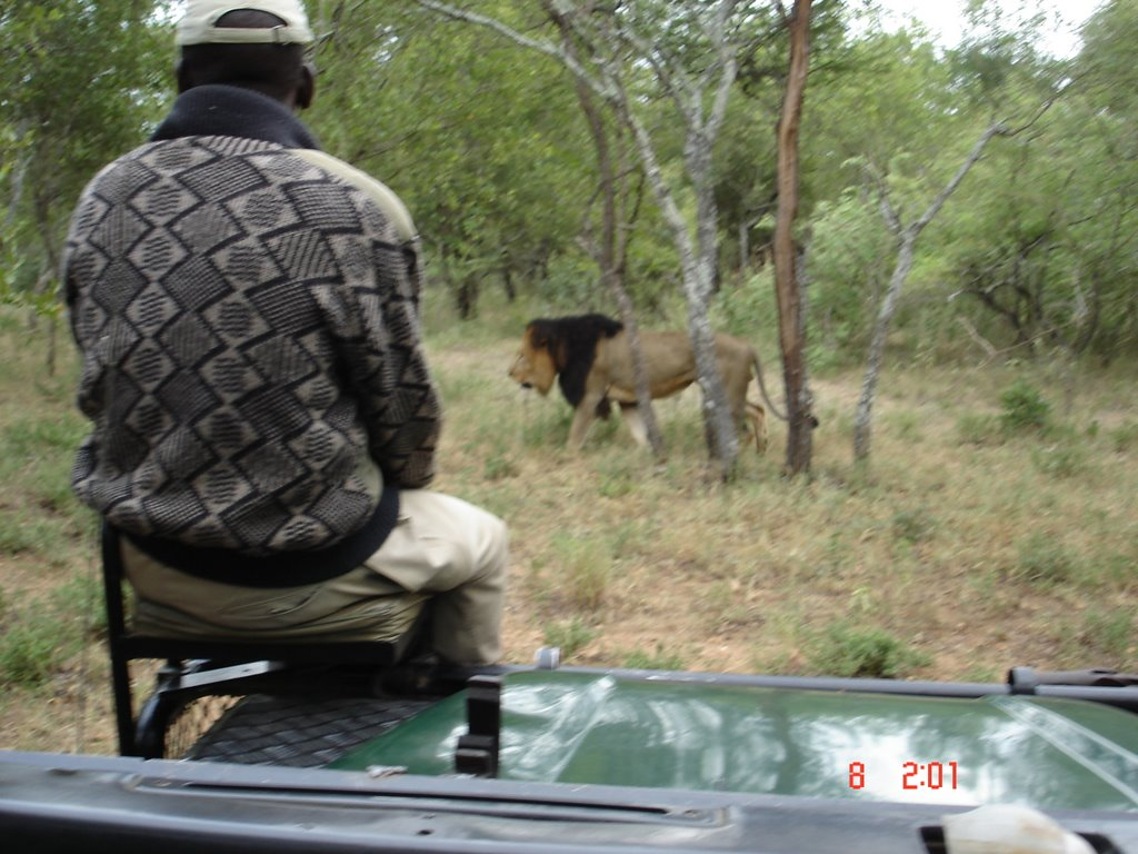 South Africa expedition 2 - Kruger Park