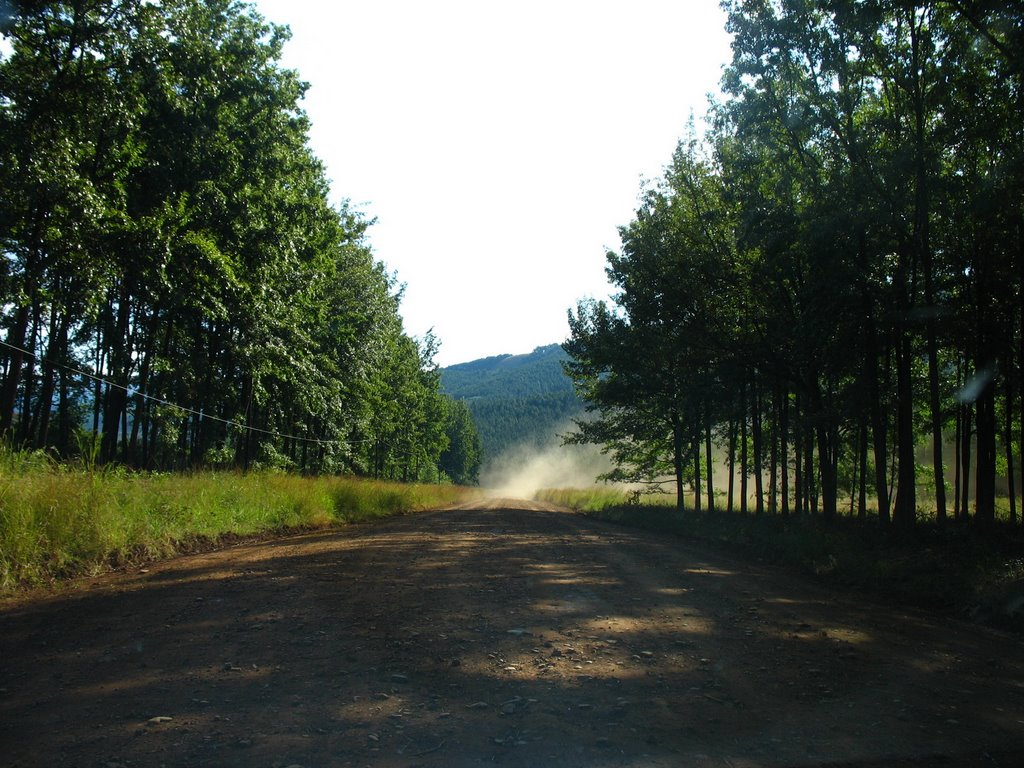 The dirt road to the waterfalls of the area
