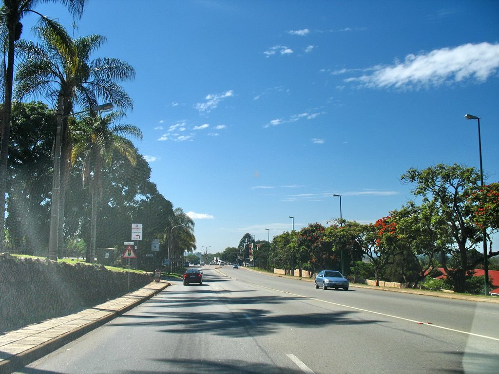 The palm lined main road through White River (Witrivier)