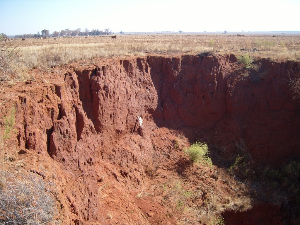 A sinkhole near Carletonville caused by mining activity in a dolomitic area.