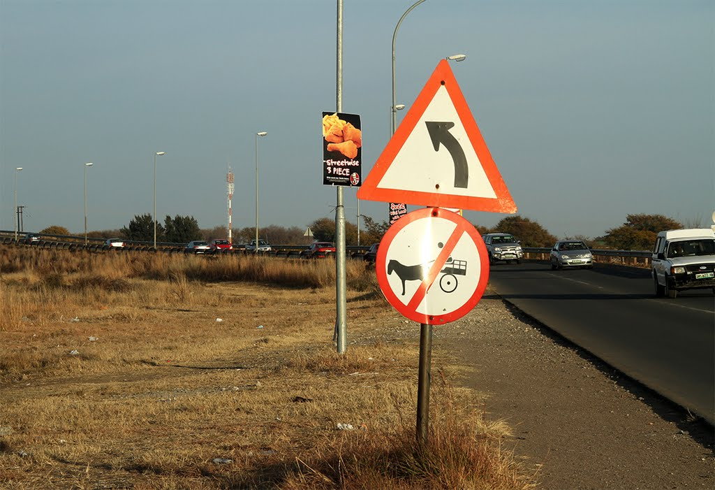 No donkey carts on the road