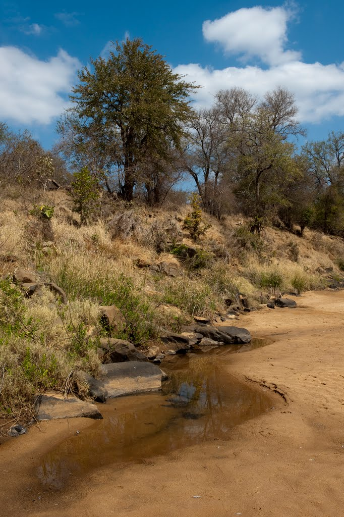 Almost dry river bed at Mazunga Camp