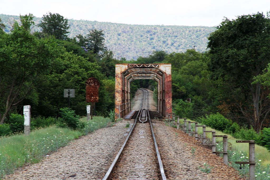 Railway bridge at Groot Marico