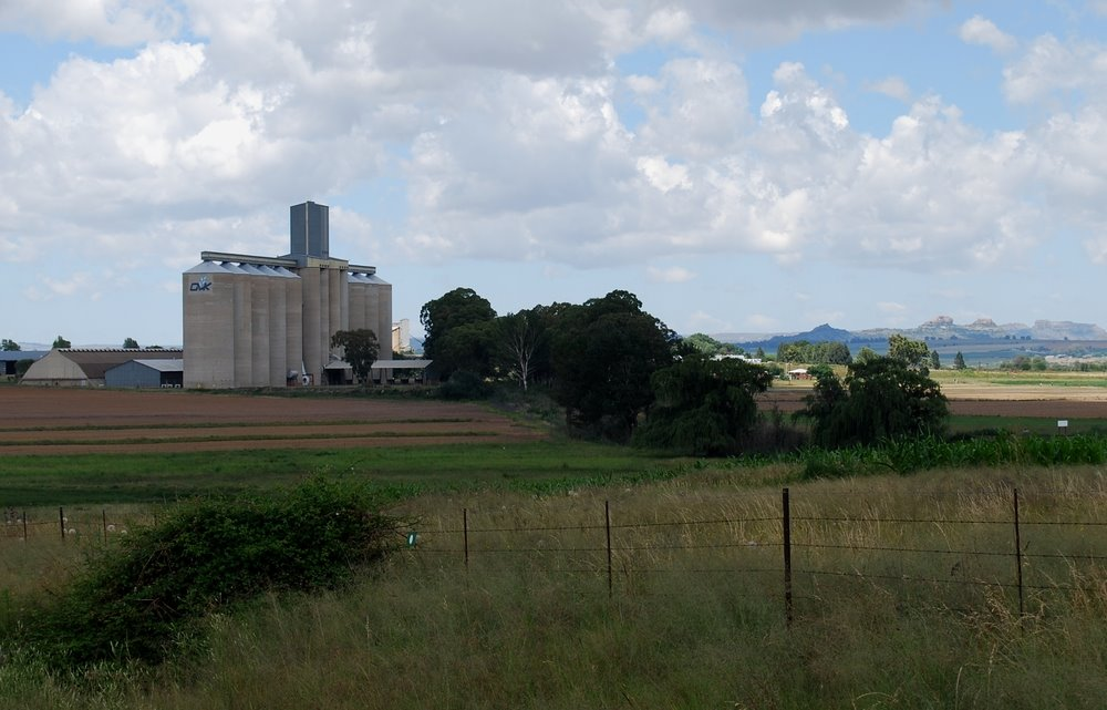 Grain Elevator at Clocolan