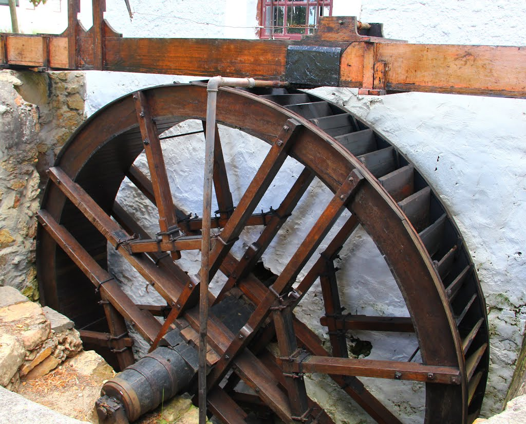 Waterwheel driving the mill at Elim