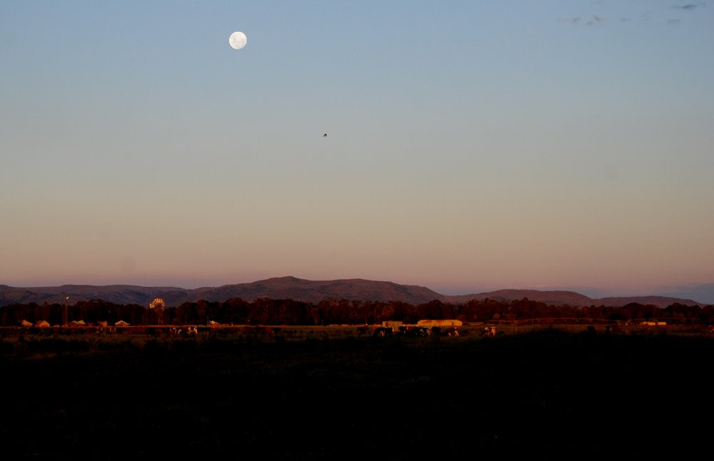 Moon rising over farm, Henley on Klip, South Africa