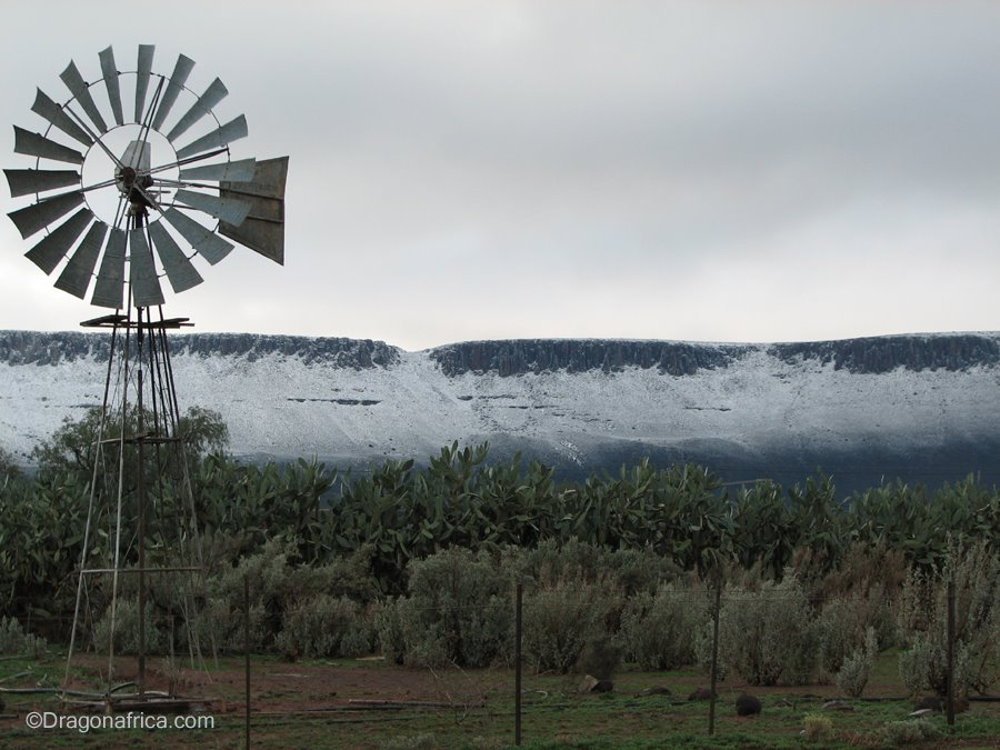 Snow on the Hantam Mountains